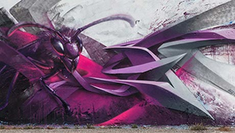 Pink Wasp - Grafitti Step by Step von Siuz